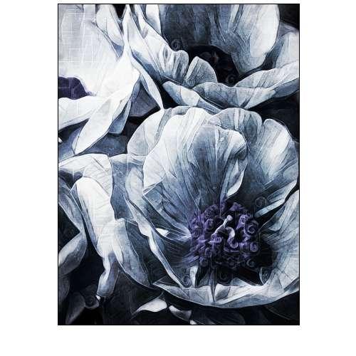 Peony Blue Petals II